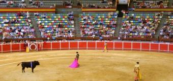 Los alcaldes del PSOE y Podemos que prohíban los toros serán llevados a los tribunales