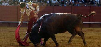 Roca Rey, dueño y señor de Sevilla