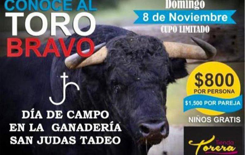 """""""Conoce Al Toro Bravo""""  Ahora En San Judas Tadeo"""