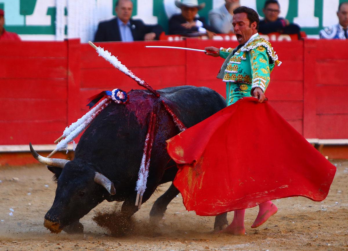 Antonio Ferrera sufre fuerte golpe en el pie derecho al ser pisado por un toro en Guadalajara